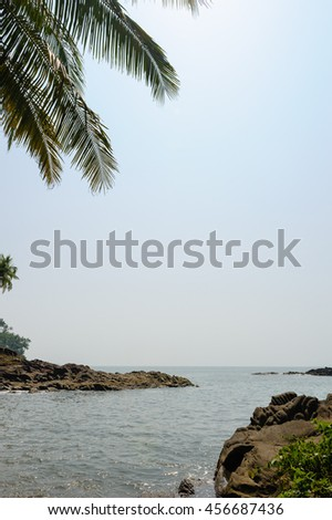 Coconut Palm trees on a beautiful tropical beach.