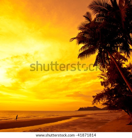 Coconut palms and sand beach, man running on sunset. Thailand, Koh Chang, Kai Bae beach - stock photo