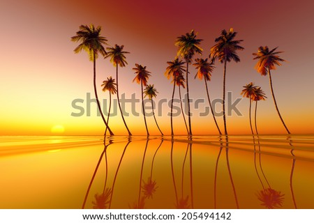coconut palms at red tropical sunset over calm sea - stock photo