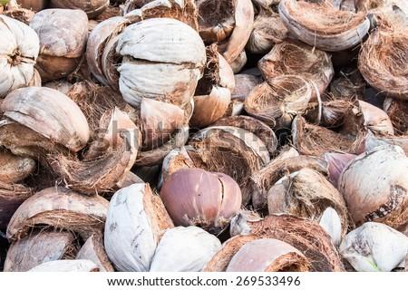 Coconut shell - stock photo