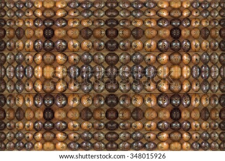 Coconut shell background