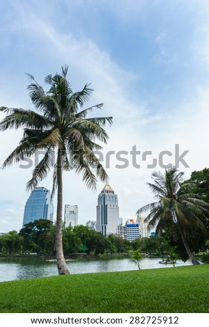 coconut tree in the public park, central downtown in Bangkok Thailand - stock photo