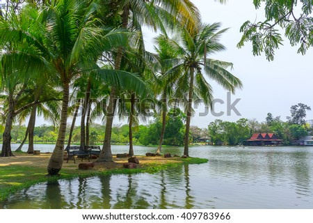 Coconut trees with beautiful lake beach view in Thailand