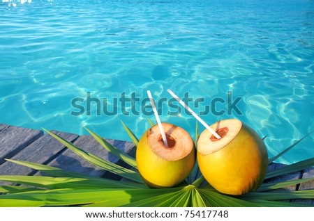coconuts cocktail palm tree leaf in Caribbean tropical sea [Photo Illustration] - stock photo