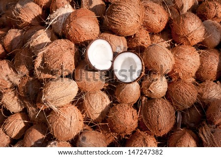 Coconuts cut in half and whole coconuts. A lot/heap of fresh tasty coco in Kerala India dried in sun to make oil from copra. member of the family Arecaceae (palm family).  charcoal and coir.  drupe - stock photo