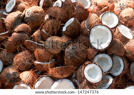 Coconuts whole and cut in half - stock photo