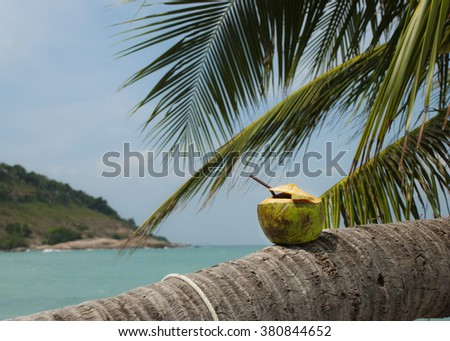 Coconuts with drinking straw on the palm at the sea