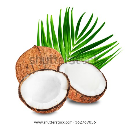 Coconuts with green palm leaf isolated on a white background. Two halves of open coconut and one closed coconut.  - stock photo