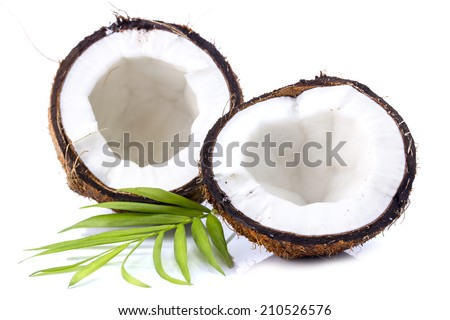 Coconuts with leaves on a white background - stock photo
