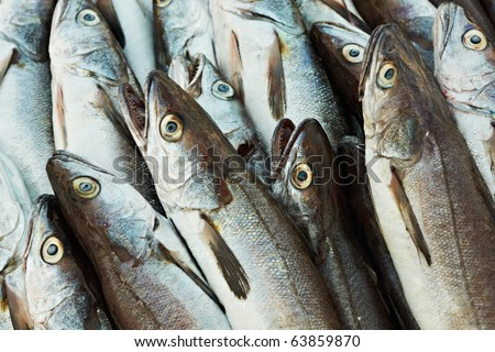 Cod fish on fishermen market in French Provence - stock photo