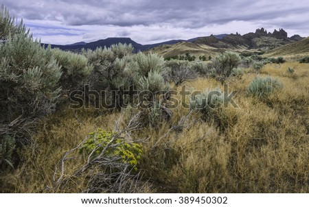 Cody, Wyoming, USA. Arid landscape dominated by sagebrush and dry grasses with rock formations in the distance, Cody, Wyoming, USA.