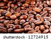 coffee background, close up of the beans - stock photo