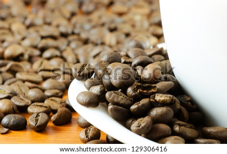 Coffee bean and white cup