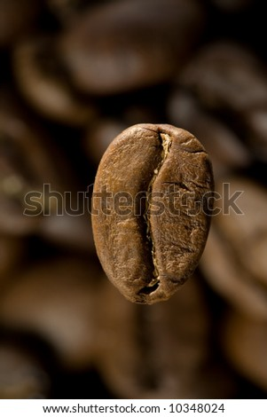 coffee bean on a background