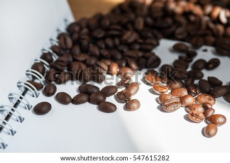 Coffee bean on white paper