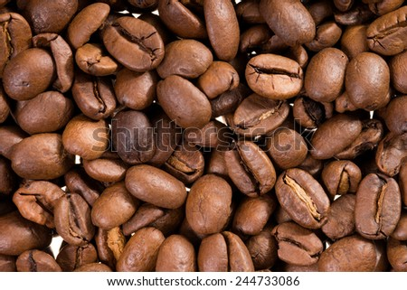 Coffee beans background / Coffee - stock photo
