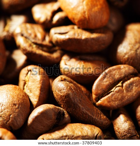 Coffee beans close-up, may be used as background. Shallow DOF!