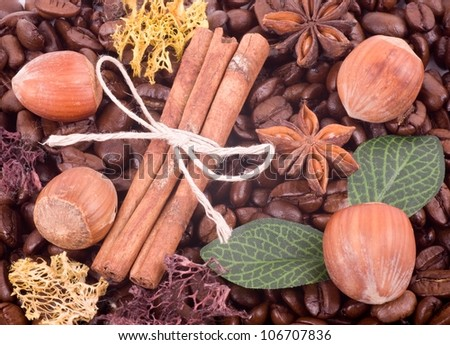 Coffee beans, Filbert and cinnamon background - stock photo