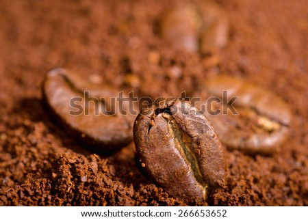 Coffee beans in the heat of the grounded coffe, macro close-up. - stock photo