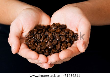 coffee beans in the palms - stock photo