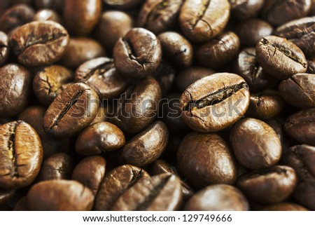 coffee beans macro background selective focus