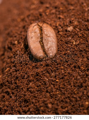 Coffee beans on then heap grounded coffe, macro close-up. - stock photo