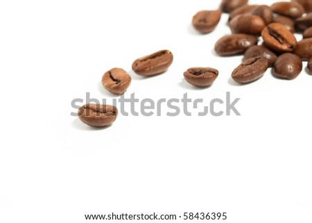 Coffee beans on white background with space for text