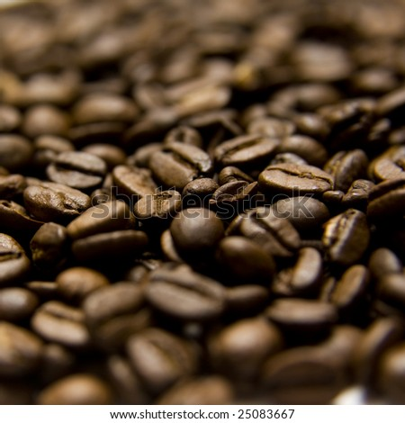 coffee beans, shallow DOF - stock photo