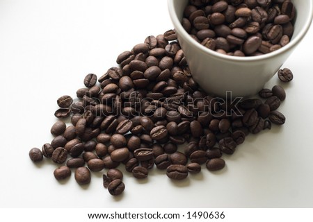 Coffee beans surrounding a coffee cup full of beans
