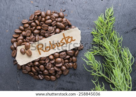 Coffee beans with Robusta label on black wooden background. - stock photo