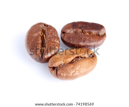 Coffee seeds on a white background