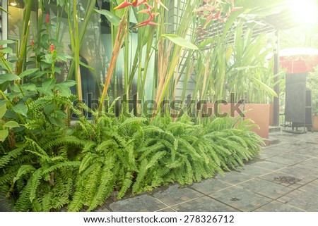 Coffee shop with garden , nature decoration style - stock photo