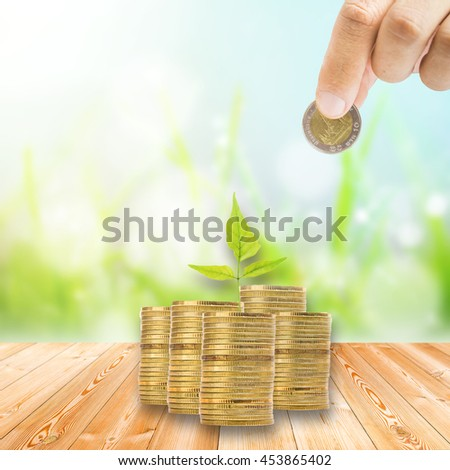 Coin stack on Wood plank on natural green grass field,Spring or summer abstract nature blur background with grass in the meadow and blue sky in the back - stock photo