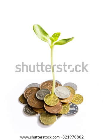 Coins and plant - stock photo