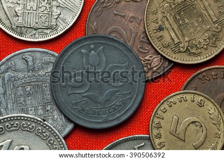 Coins of the Netherlands. Three tulips depicted in the Dutch two and a half cent coin (1941). - stock photo