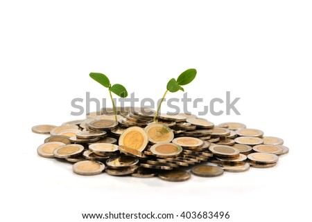 coins scattered around the base of a baby seedling. - stock photo