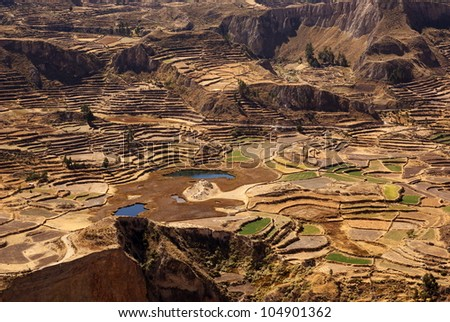 Colca Canyon, one of the deepest canyons in the world, Peru - stock photo