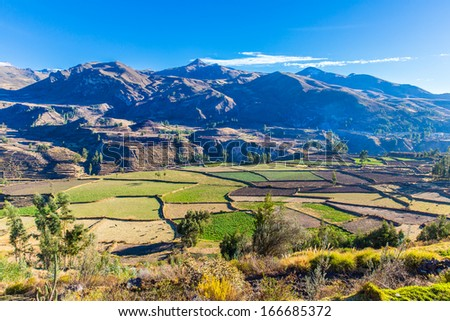 Colca Canyon, Peru,South America.  Incas to build Farming terraces with Pond and Cliff. One of deepest canyons in world - stock photo