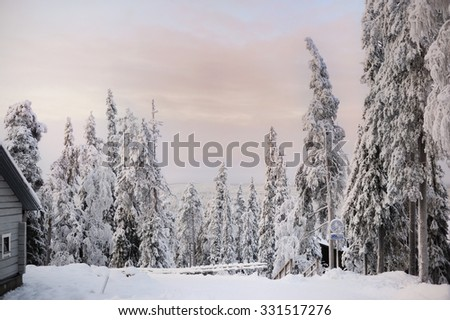 Cold and snowy winter in Lapland. Finland - stock photo