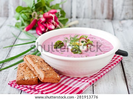 Cold beet soup on yogurt with egg, radishes and cucumbers - stock photo