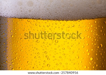 Cold golden beer with dew drops