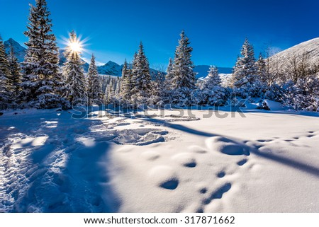 Cold winter sunrise in the mountains - stock photo