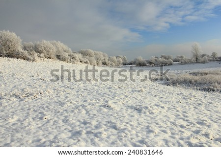 Cold winter with snowy field and blue sky - stock photo