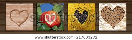 Collage - four natural hearts: wooden carved heart, apple heart, sunflower heart, tree heart - stock photo