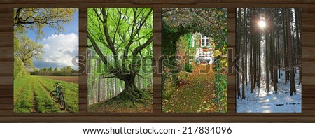 Collage - four seasons on wooden board background. rural spring landscape, gnarled tree, garden view, wintry forest. - stock photo
