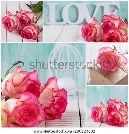 Collage from photos with splendid fresh rose on turquoise and white wooden background. Roses on white wooden table. Selective focus. - stock photo