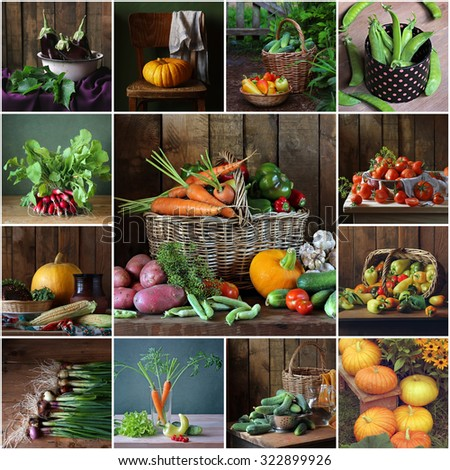 Collage from still lifes with vegetables. Vegetable background. Vegetables in a basket. - stock photo