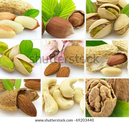 Collage from tasty nuts - stock photo