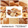 Collage from the various bread - stock photo