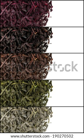 Collage of aromatic dry tea isolated on white - stock photo